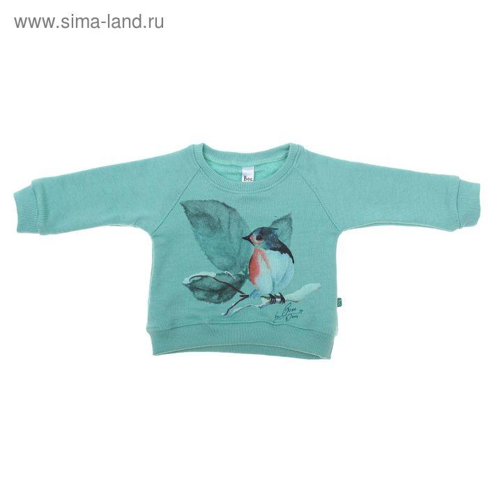 """Джемпер для девочки """"Птичка"""", рост 68 см (24), цвет зеленый 550Б-461"""