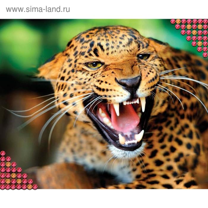 """Алмазная вышивка круглыми стразами с частичным заполнением """"Леопард"""" 27 х 39 см"""