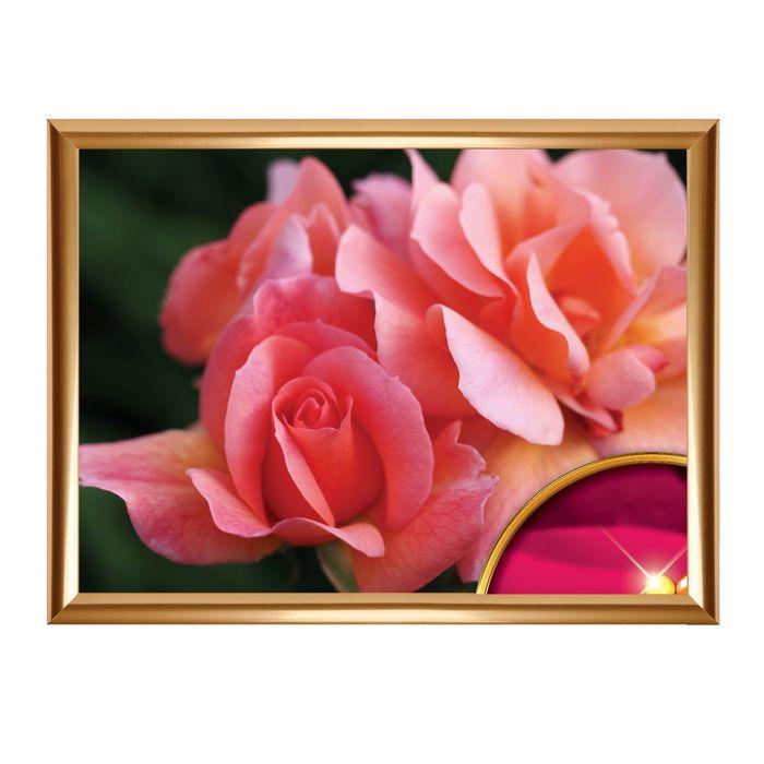 """Алмазная вышивка с частичным заполнением """"Розовые розы"""", 44 х 33 см"""