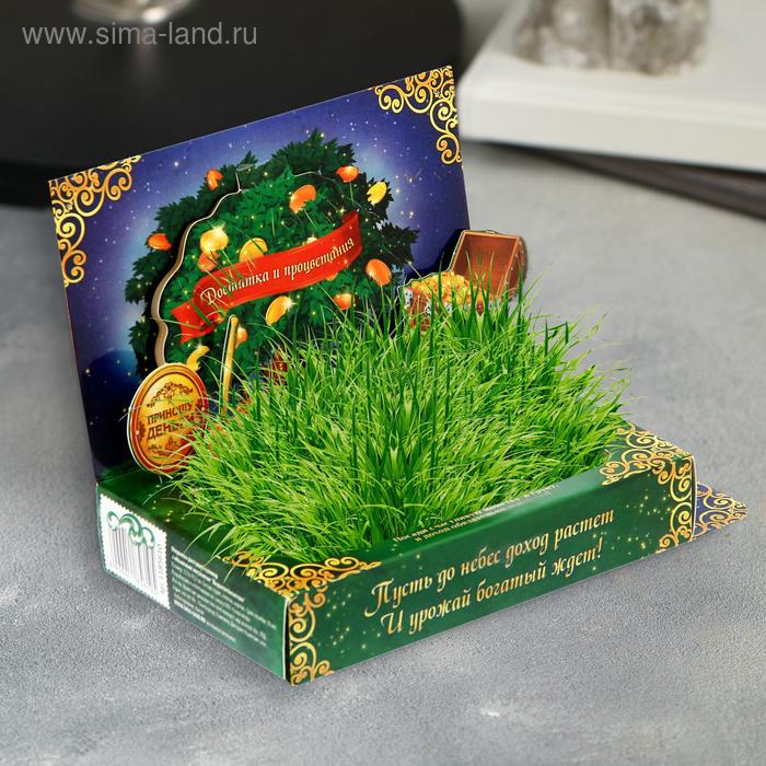"""Открытка-растущий сувенир с объем элементом """"Вырасти богатство"""""""