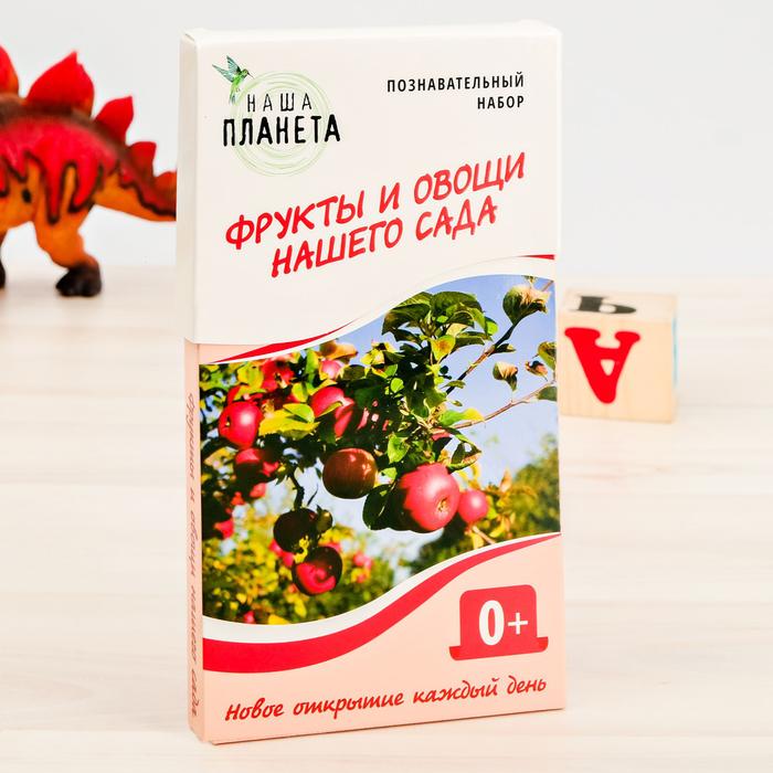 """Обучающие карточки """"Фрукты и овощи нашего сада"""""""
