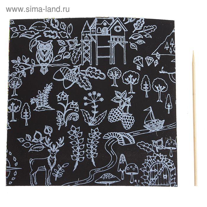 """Гравюра """"Загадочный сад №6"""" цветное основание, оборот раскраска + штихель"""