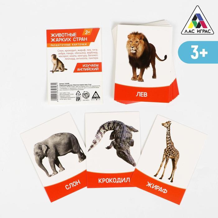"""Обучающие карточки, английский язык """"Животные жарких стран"""" 16 шт."""