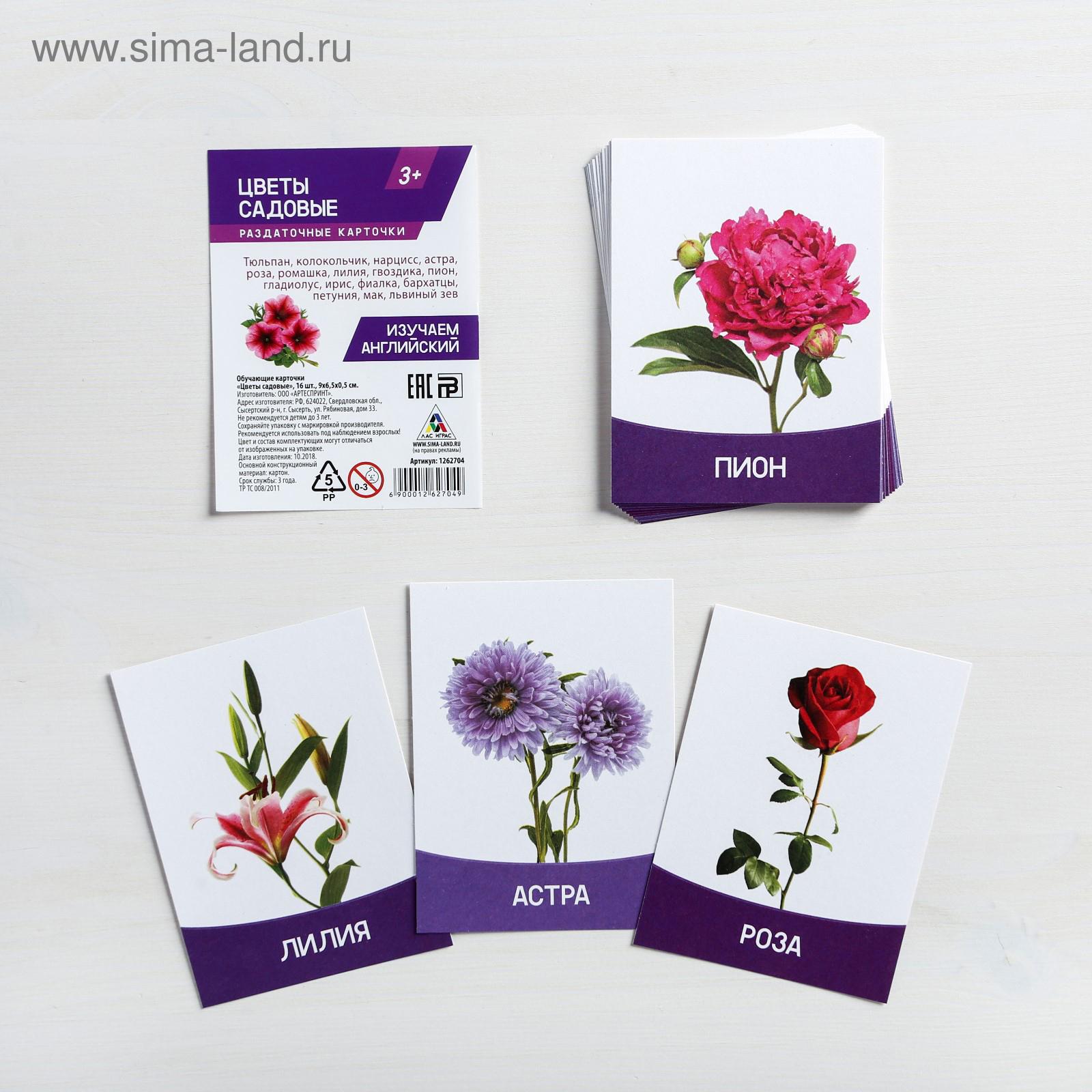 Цветы картинка для вырезания цветные