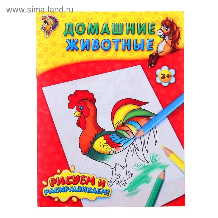 Книжка-раскраска Домашние животные 12стр.