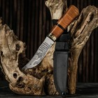 """Knife tourist """"commander"""" in the case, 23 cm, blade pattern, handle is wooden with a dark panel without limiter"""