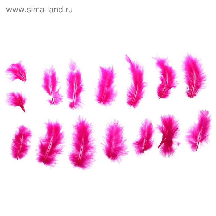 Набор перьев для декора 10 шт, размер 1 шт 10*2 цвет ярко розовый