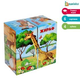 Кубики картонные «Африка», 4 штуки
