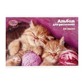 Блокнот для рисования А5, 24 листа на скрепке «Милые котята» Ош