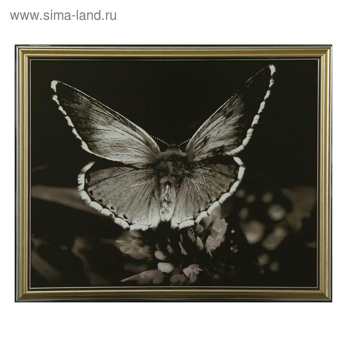 """Картина """"Бабочка"""""""