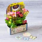 Цветы в картонном кашпо «Лучшей подруге», 12.5 × 20 см