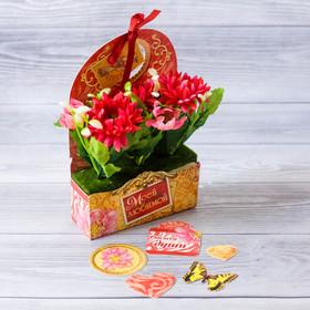 "Flowers in cardboard pots ""My beloved,"" 12.5 × 20 cm"