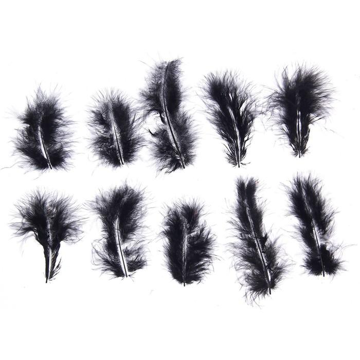 Набор перьев для декора 10 шт, размер 1 шт 10*2 цвет черный