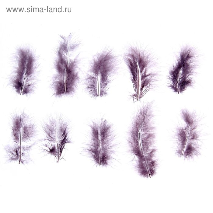 Набор перьев для декора 10 шт, размер 1 шт 10*2 цвет серый