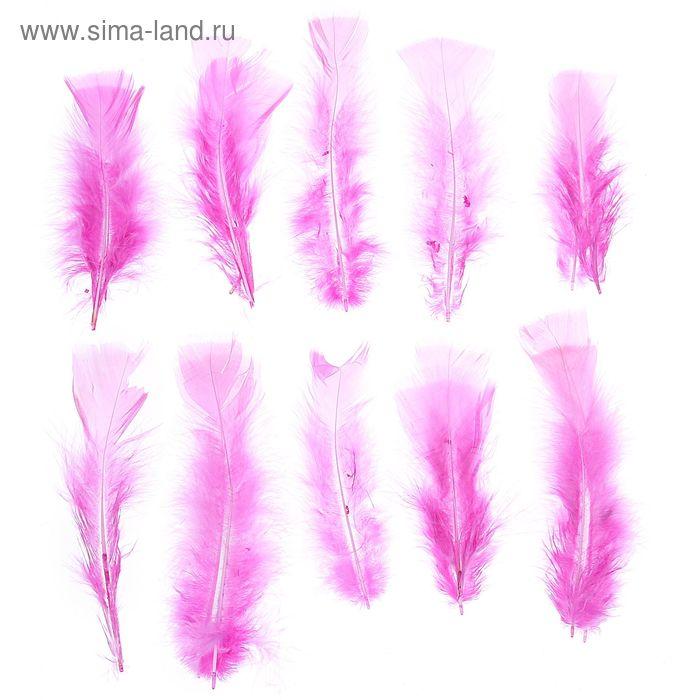 Набор перьев для декора 10 шт, размер 1 шт 16*4 цвет розовый