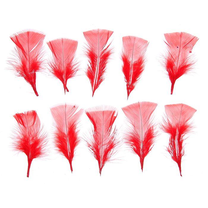 Набор перьев для декора 10 шт, размер 1 шт 10*4 цвет красный