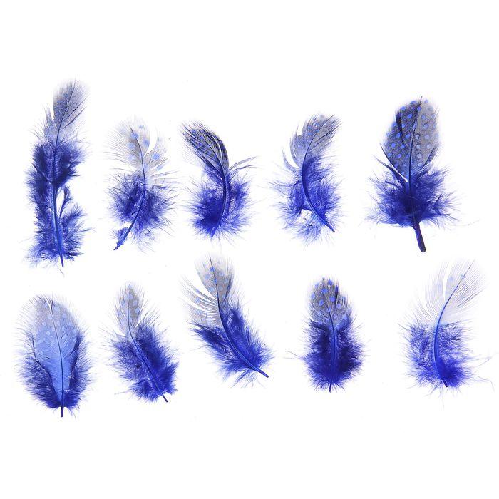 Набор перьев для декора 10 шт, размер 1 шт 5*2 цвет синий с черным