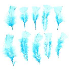 Набор перьев для декора 10 шт., размер 1 шт: 10 × 4 см, цвет голубой