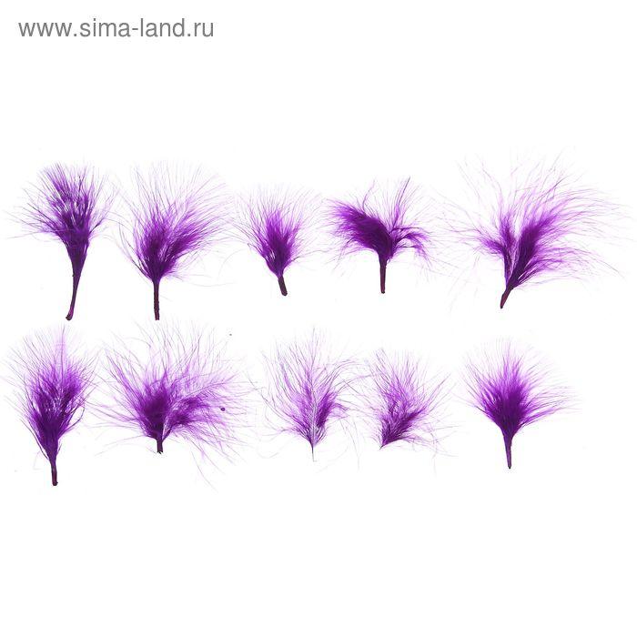 Набор перьев для декора 10 шт, размер 1 шт 7*7 цвет фиолетовый