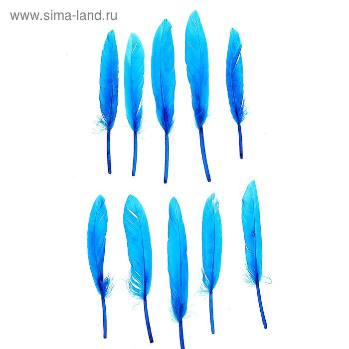 Набор перьев для декора 10 шт, размер 1 шт 13*1,5 цвет бирюзовый