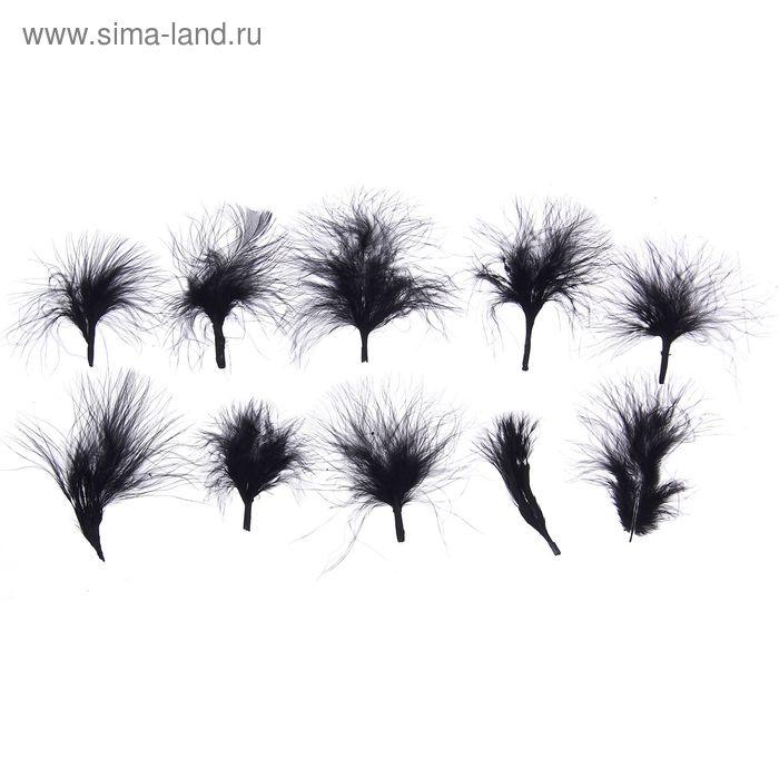 Набор перьев для декора 10 шт, размер 1 шт 7*7 цвет черный