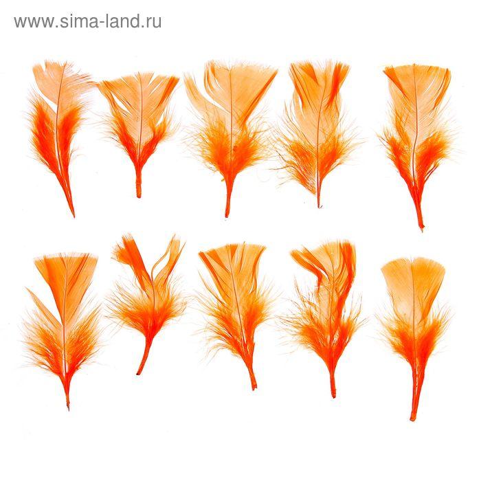 Набор перьев для декора 10 шт, размер 1 шт 10*4 цвет оранжевый