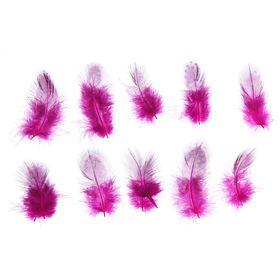 Набор перьев для декора 10 шт., размер 1 шт: 5 × 2 см, цвет розовый с чёрным