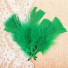 Набор перьев для декора 10 шт, размер 1 шт 10*4 цвет светло зеленый