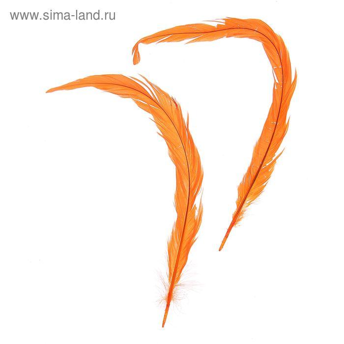 Набор перьев для декора 2 шт, размер 1 шт 30*3 цвет оранжевый