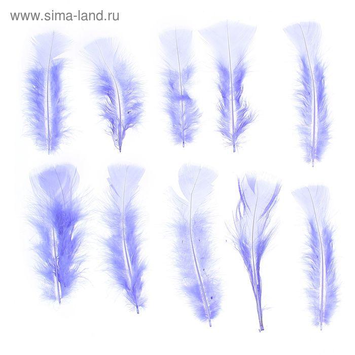 Набор перьев для декора 10 шт, размер 1 шт 16*4 цвет голубой