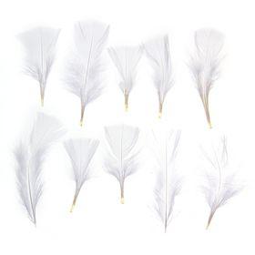 Набор перьев для декора 10 шт., размер 1 шт: 10 × 4 см, цвет белый