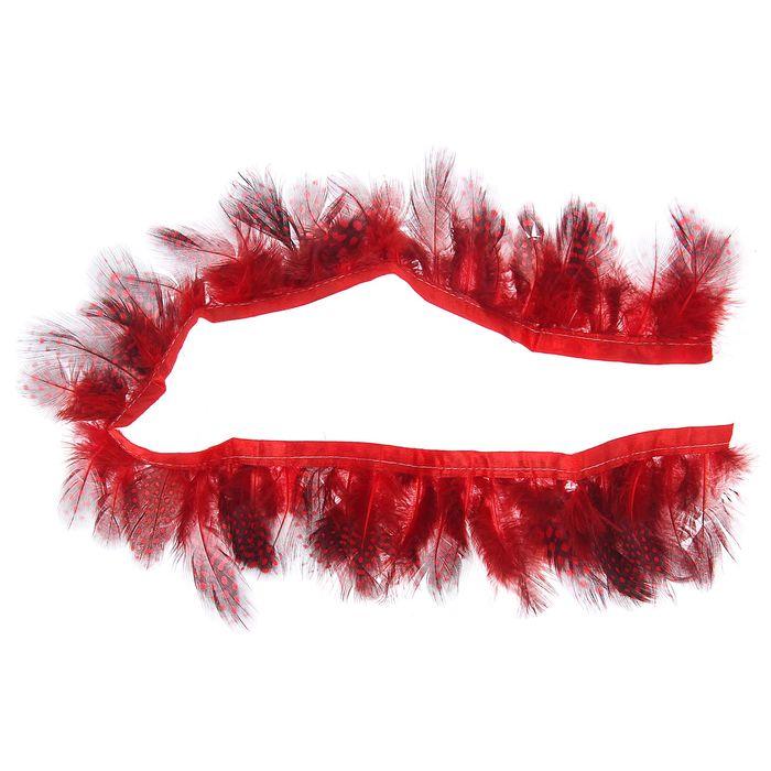 Лента перьев для декора, размер 1 шт 50*6 цвет красно-черный