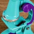 """Микроскоп """"Юный исследователь"""", кратность увеличения 450х, 200х, 100х, с подсветкой, микс  1 - фото 106541442"""