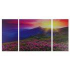 """Модульная картина на стекле """"Горные цветы"""", 2 — 25×50, 1 — 50×50 см, 100×50 см"""