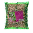 Семена Люпин узколистный, 1 кг