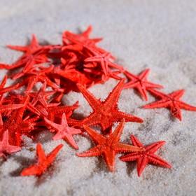 Набор натуральных морских звезд 1,5-2 см, 40 шт Ош