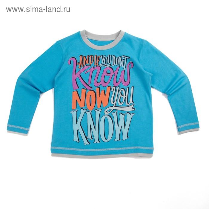 Джемпер для мальчика, рост 110 см (60), цвет голубой_160092