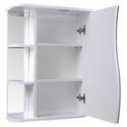 "Зеркало-шкаф ""Тура"", с тремя полками, 50 х 23,4 х 70 см, со светильником - фото 886489"