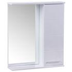 "Зеркало-шкаф ""Квадро"", 600 х 154 х 700 мм, белый глянец"