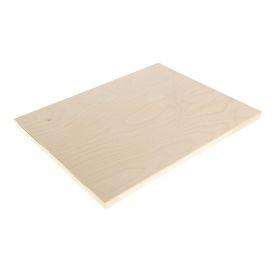 Планшет деревянный 40 х 50 х 2 см, фанера (для рисования эпоксидной смолой)