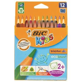 Цветные карандаши 12 цветов, детские, трёхгранные, BIC Kids Evolution Triangle