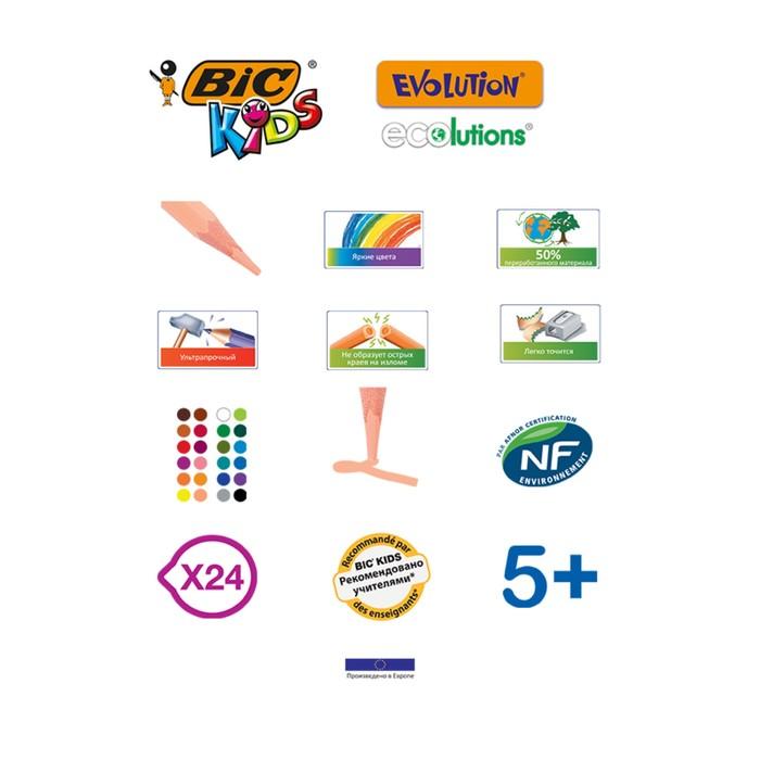 Карандаши 24 цвета BIC Kids Evolution ECOlutions, пластиковые