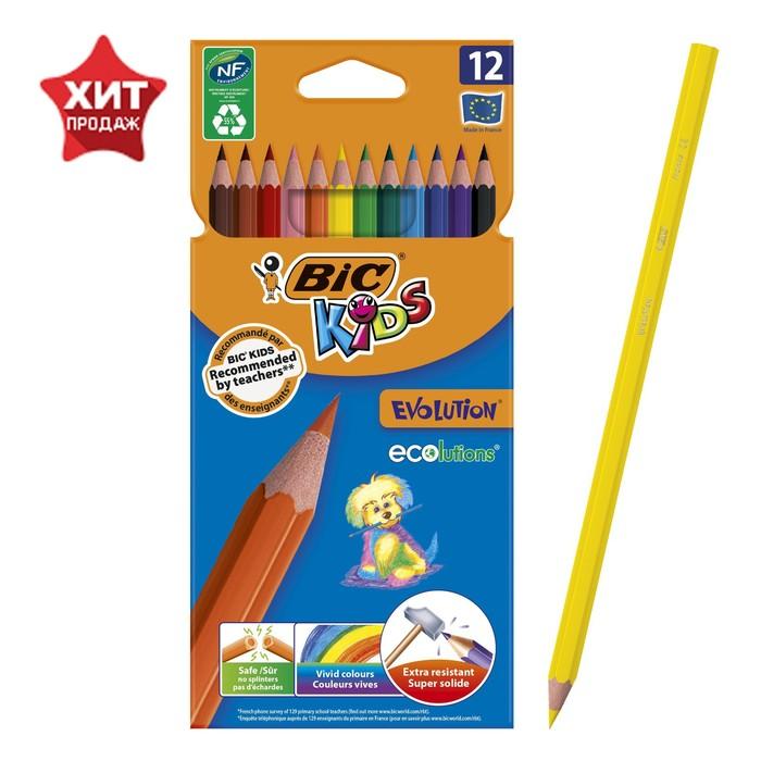 Карандаши 12 цветов BIC Kids Evolution ECOlutions, пластиковые
