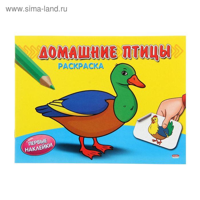 """Раскраска А5 Первые наклейки """"Домашние птицы"""""""