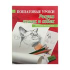 """Пошаговые уроки рисования """"Рисуем кошек и собак"""""""