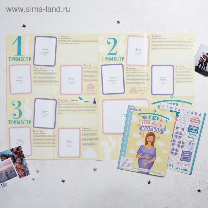 """Плакат будущей мамочки в папке """"Мы ждём тебя малыш"""" для вклейки фото и записей на каждый месяц + наклейки"""
