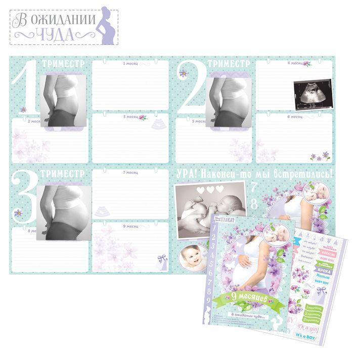 """Плакат будущей мамочки в папке """"9 месяцев в ожидании чуда"""" для вклейки фото и записей на каждый месяц + наклейки"""