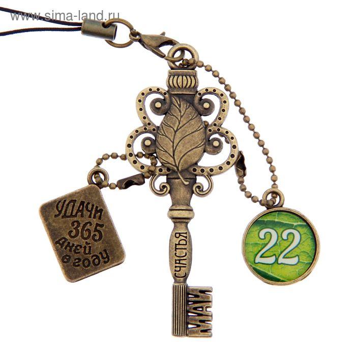 """Ключ сувенирный """"22 Мая"""", серия 365 дней"""