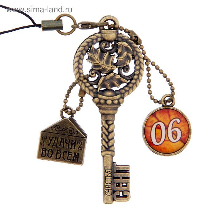 """Ключ сувенирный """"6 Сентября"""", серия 365 дней"""