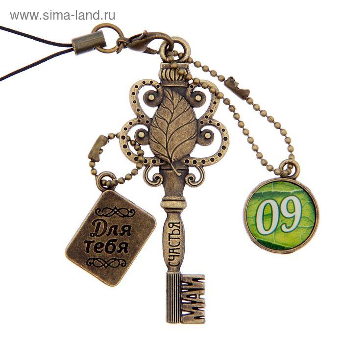 """Ключ сувенирный """"9 Мая"""", серия 365 дней"""